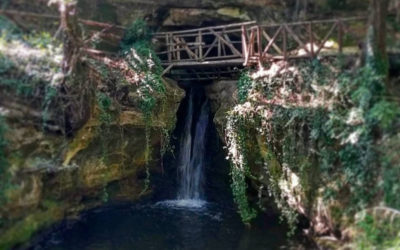 Infrasettimanale al Parco di Veio, Ponte Sodo e Fosso Olmetti – 9 ottobre 2019