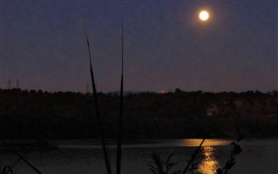 Luna piena ed escursione serale in battello a Tevere Farfa – 14 settembre 2019