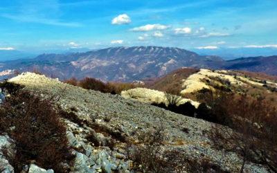 Monte Gennaro, il sentiero dei grandi faggi – 7 dicembre 2019