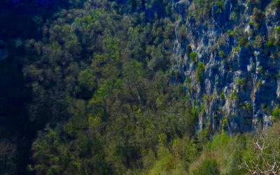 Escursione nel cuore del revotano: scrigno di biodiversità – 16 febbraio 2020