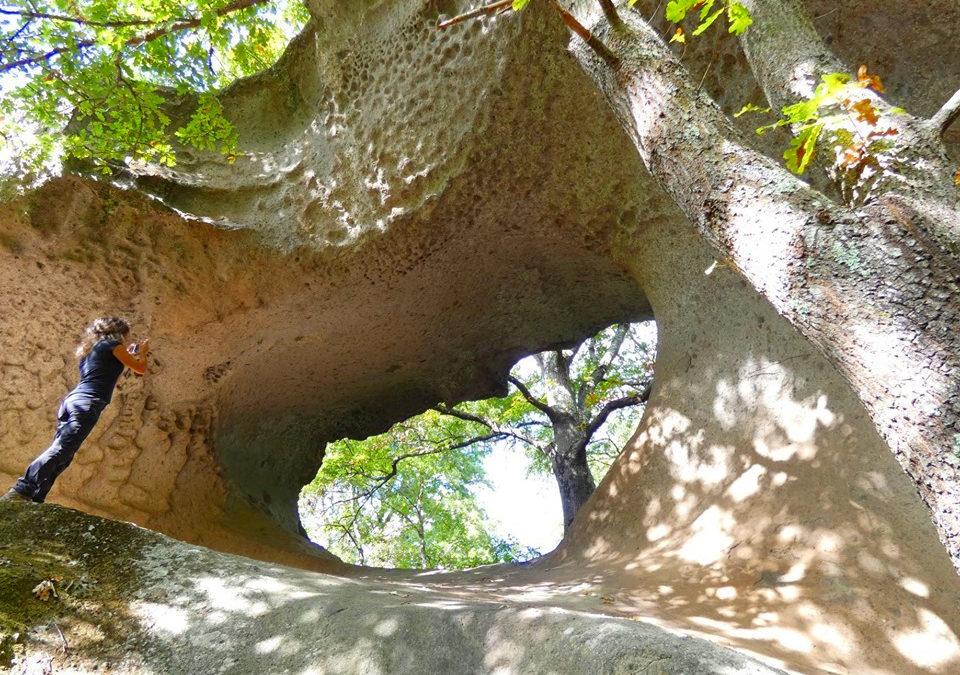 Escursione a Corviano e alla Selva di Malano – 31 maggio 2020