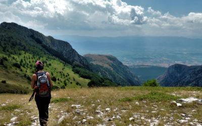 Monte Etra: dove volano i Grifoni – 11 luglio 2020