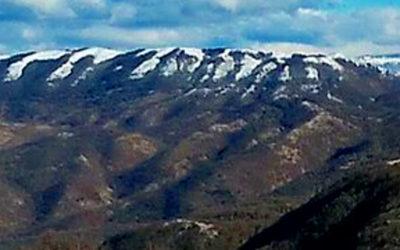 Monte Pellecchia, dove osano le aquile – 5 luglio 2020