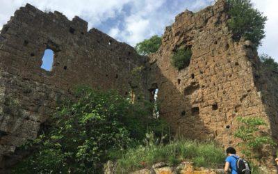 Castel d'Ischia, la tagliata falisca, il Fosso di Ponte Castello – 23 agosto 2020