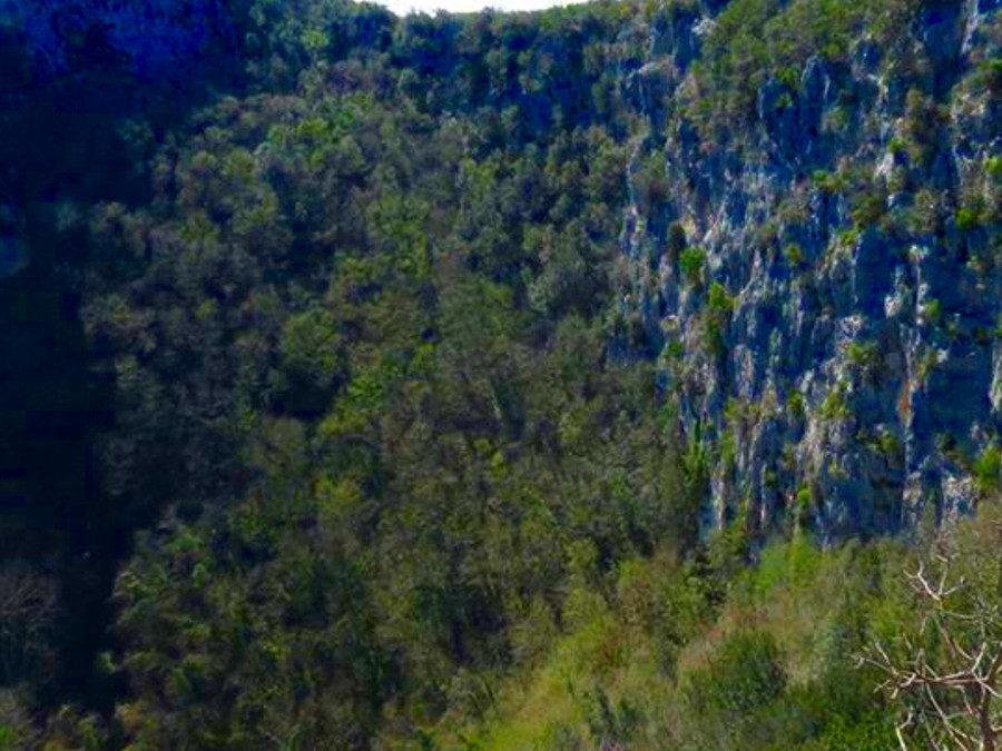 Revotano: scrigno di biodiversità – 26 luglio 2020