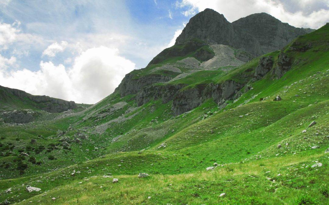 Parco Nazionale d'Abruzzo: tra amori dei Cervi e antiche Foreste – 19/20 settembre 2020