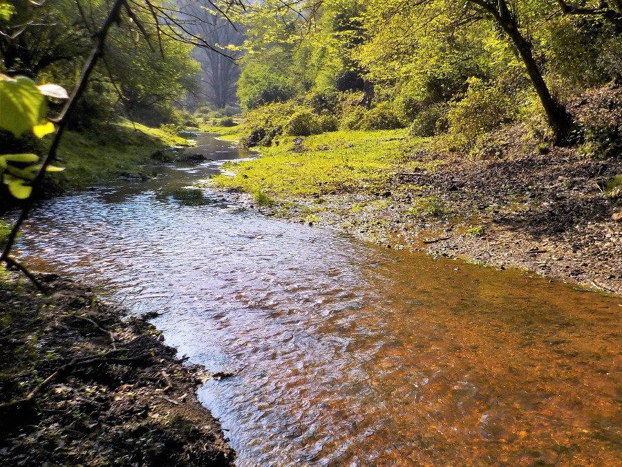 MercolediTrekk alla Valle del Sorbo – 16 settembre 2020