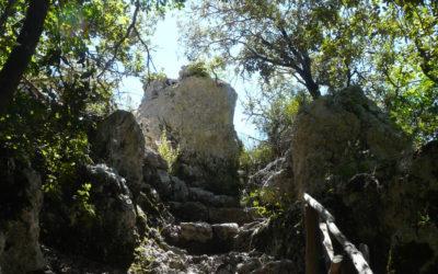 Il bosco sacro di Monteluco, Francesco, la Lex Spoletina – 27 settembre 2020