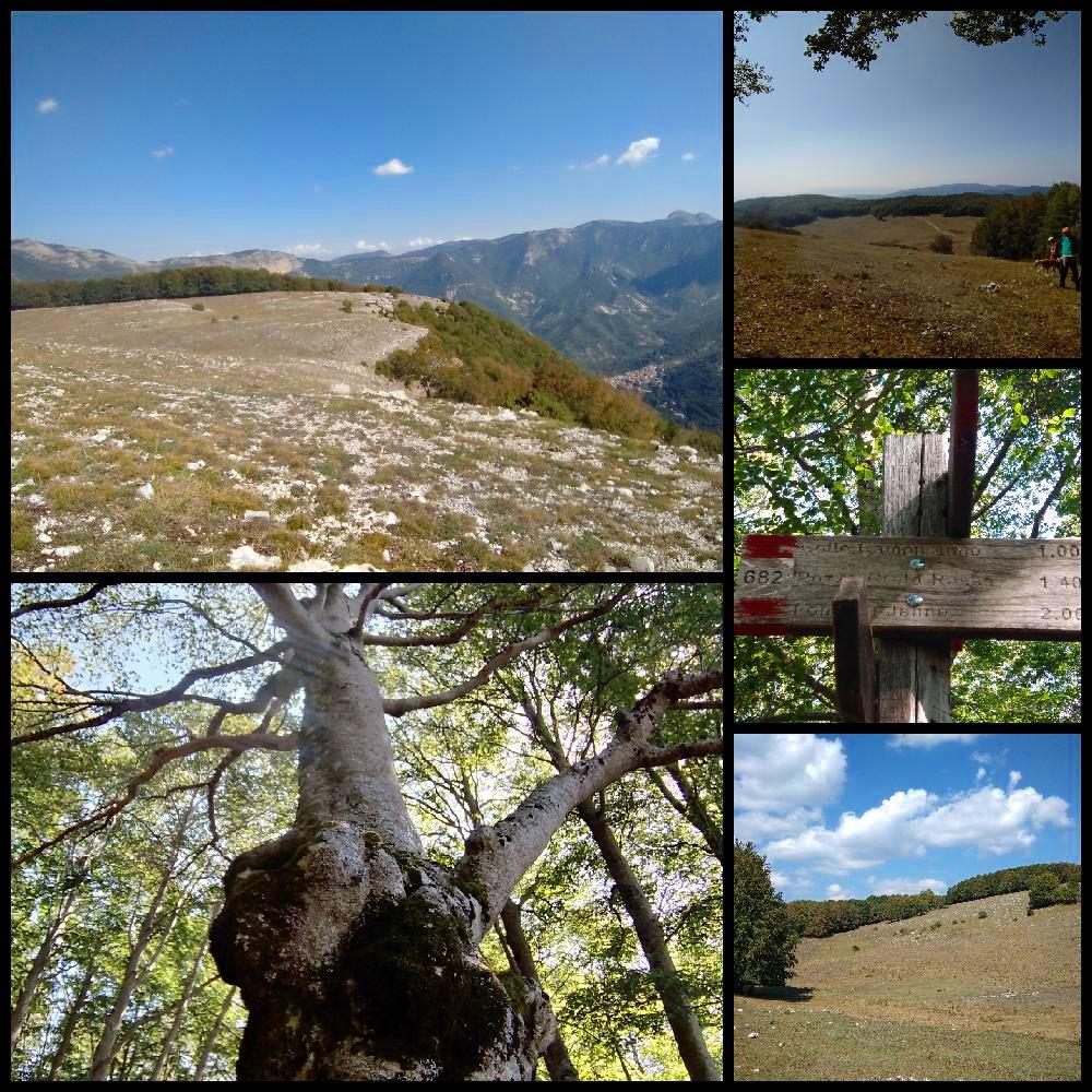 Colle Campitellino: Escursione nel Parco dei Simbruini – 25 ottobre 2020