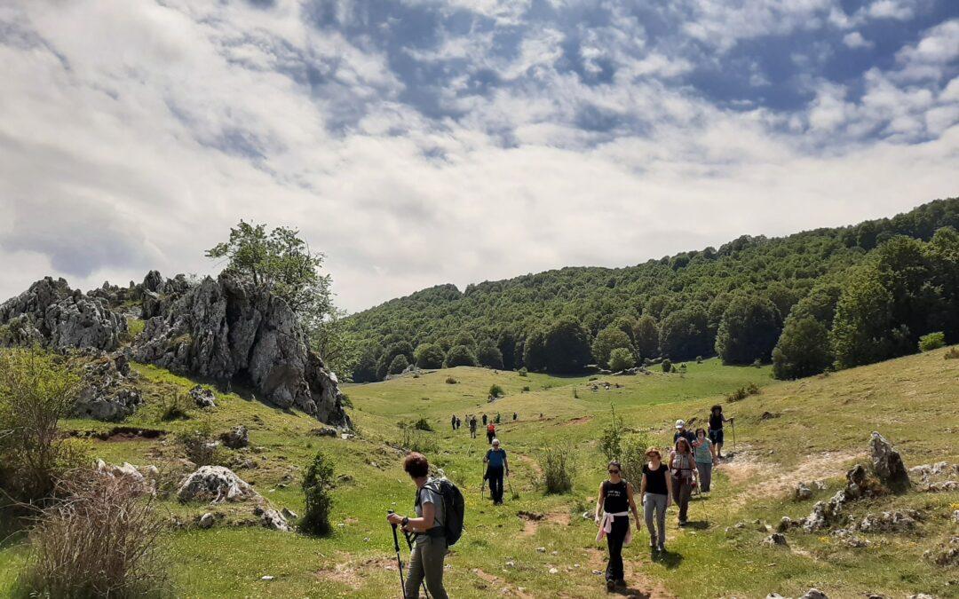 Di Boschi e di Vallate: il Monte Calvo – 5 dicembre 2020