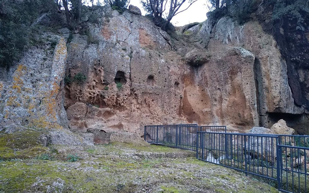 Nei Dintorni di Musarna, tra Castel Cardinale e Castel Cordigliano – 14 marzo 2021