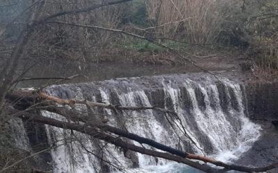 Monumento Naturale delle Forre di Corchiano – 7 gennaio 2021