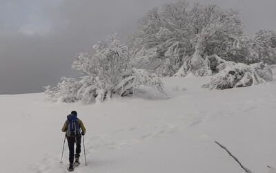 CiaspoleTrek Monte Cardito e Rifugio La Fossa – 6 marzo 2021