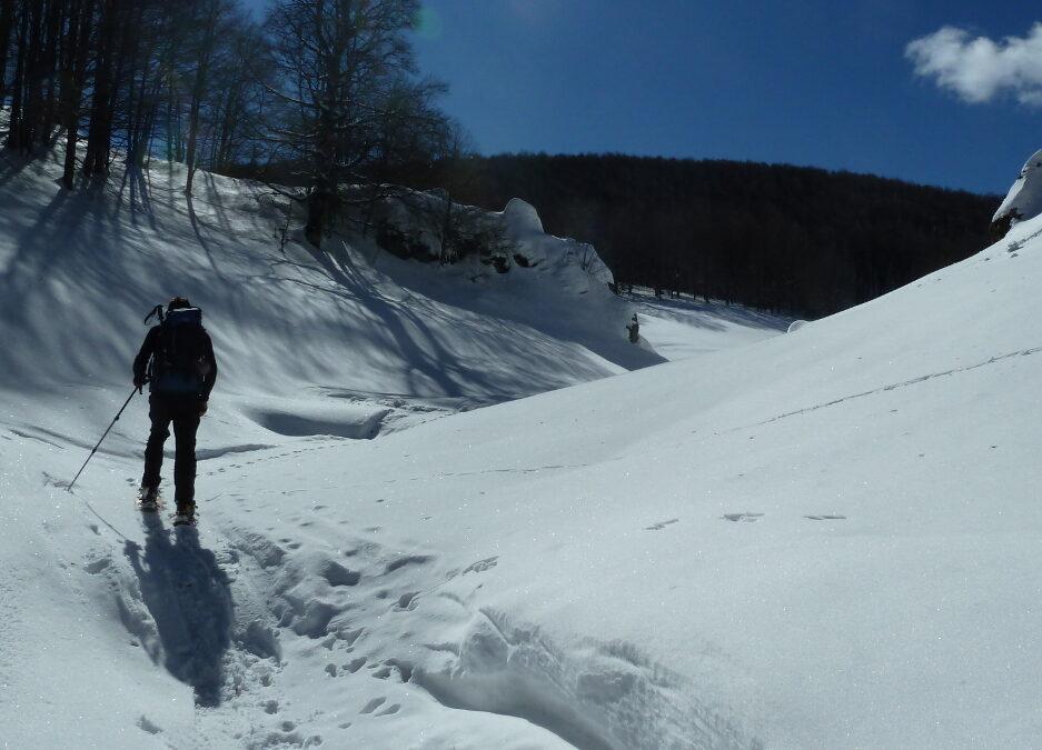 CiaspoleTrek Monte Calvo. Tra Boschi e Bianche Vallate – 6 febbraio 2021
