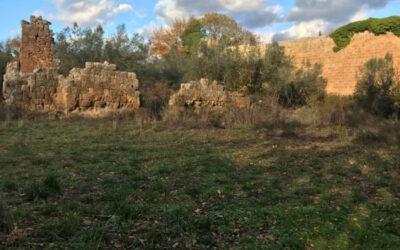 AL COMPLETO Civitella Cesi e La Necropoli di San Giovenale – 21 febbraio 2021