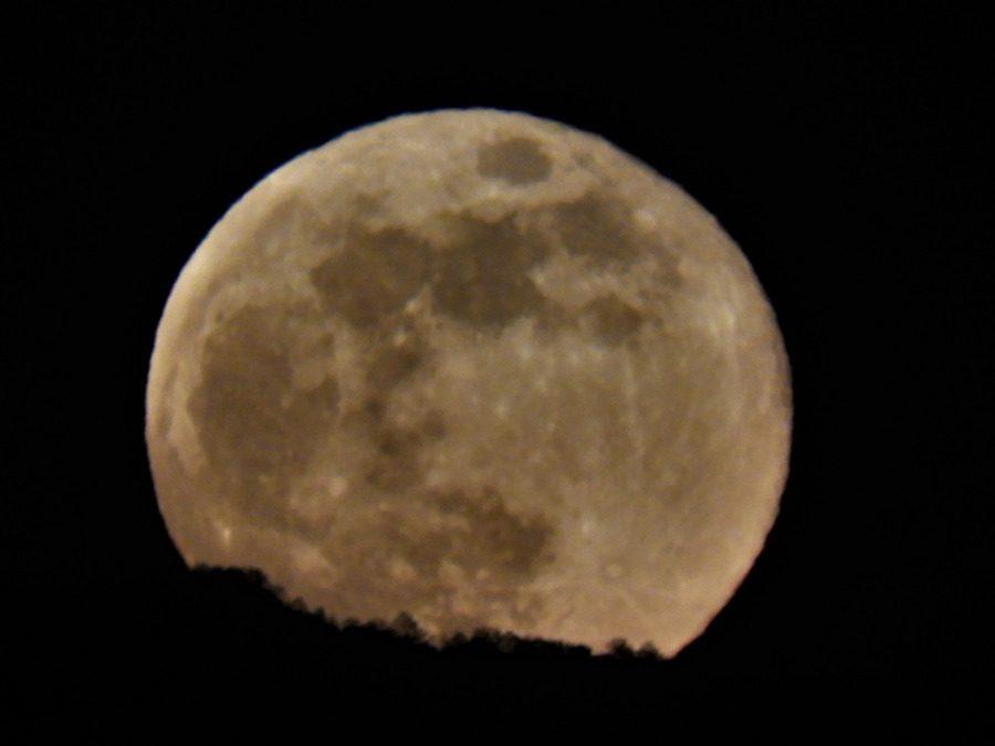 La Faggeta del Cimino al Chiaro di Luna – 22 agosto 2021