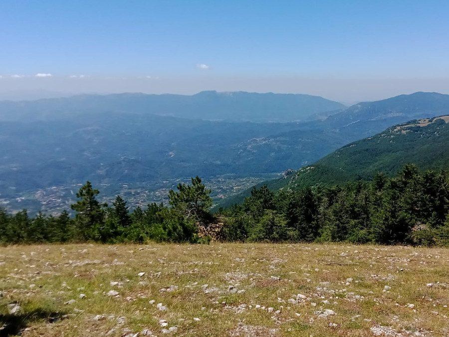 Tra vasti pascoli e foreste: il Monte Calvo – 25 luglio 2021