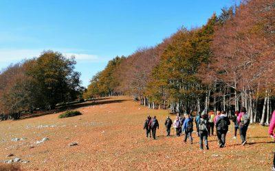 Le prossime uscite tra i colori dell'autunno 🍁